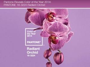 beauté Radiant-Orchid-624x468