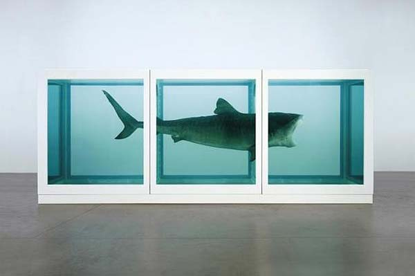 Tendances design hirst requin