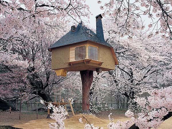 tendances design maisons dans les arbres Terunobu Fujimori
