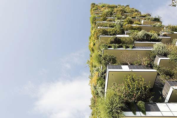 tendances futurs ville forêt Bosco