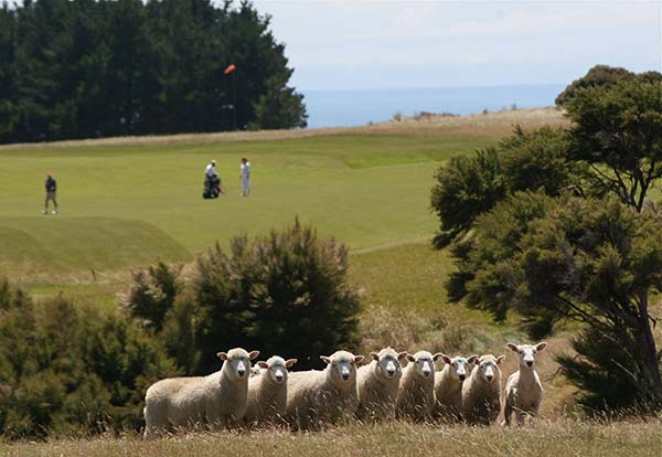 tendances luxe farm hotels Cape Kidnappers