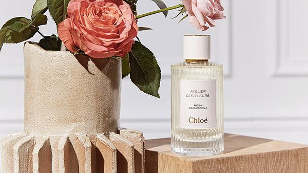 Les Ateliers des fleurs de Chloé.